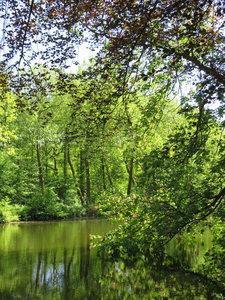 Welzijn retreat weekend